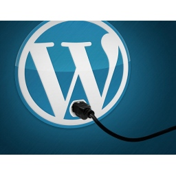 Sajber kriminalci sakrili backdoor u lažnom WordPress pluginu