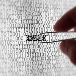 Analiza 550 miliona ukradenih lozinki otkriva kakve lozinke treba izbegavati
